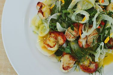 Seared scallops with shaved fennel, apple and orange