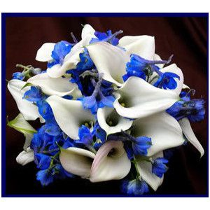 Wedding Bouquet Calla Lilies And Dark Blue Delphinium Flowers