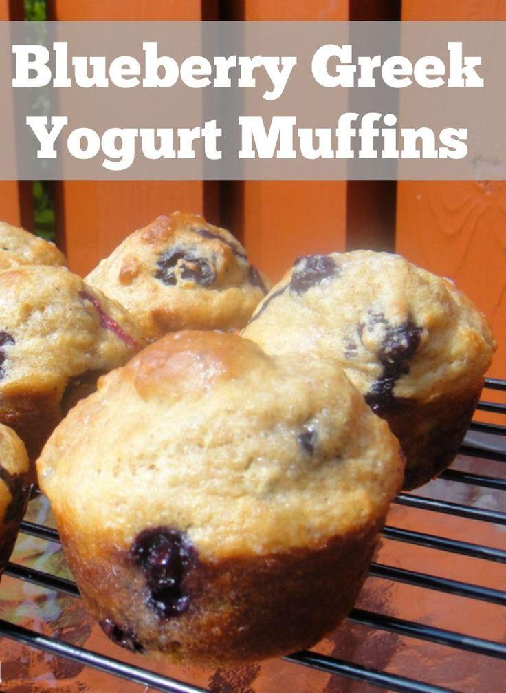Blueberry muffins made with greek yogurt. Breakfast freezer recipe