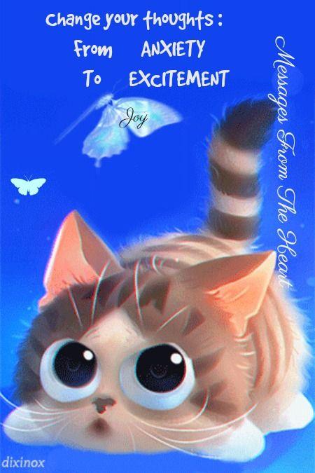 Картинки анимашки котиков