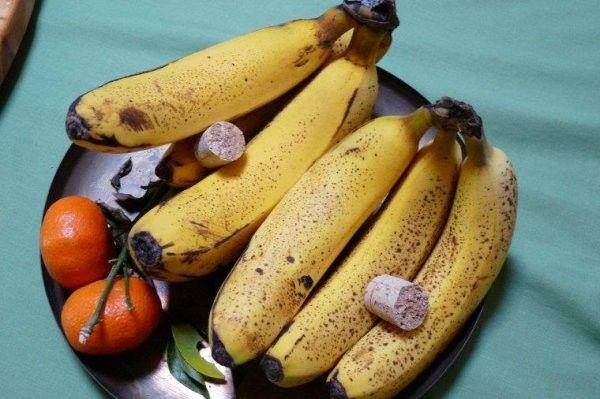 2 astuces pour faire disparaître naturellement les moucherons alimentaires noté 4 - 2 votes Pour chasser les moucherons qui envahissent votre intérieur, et qui tournent plus particulièrement autour de votre corbeille de fruits, testez l'une de ces astuces : 1/ Prenez un bouchon en liège et coupez-le en deux. Placez-le ensuite dans votre corbeille à...