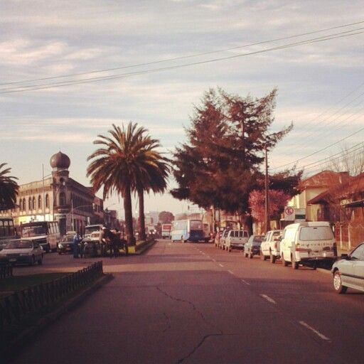 Barros Arana, Sector Estación. Temuco.