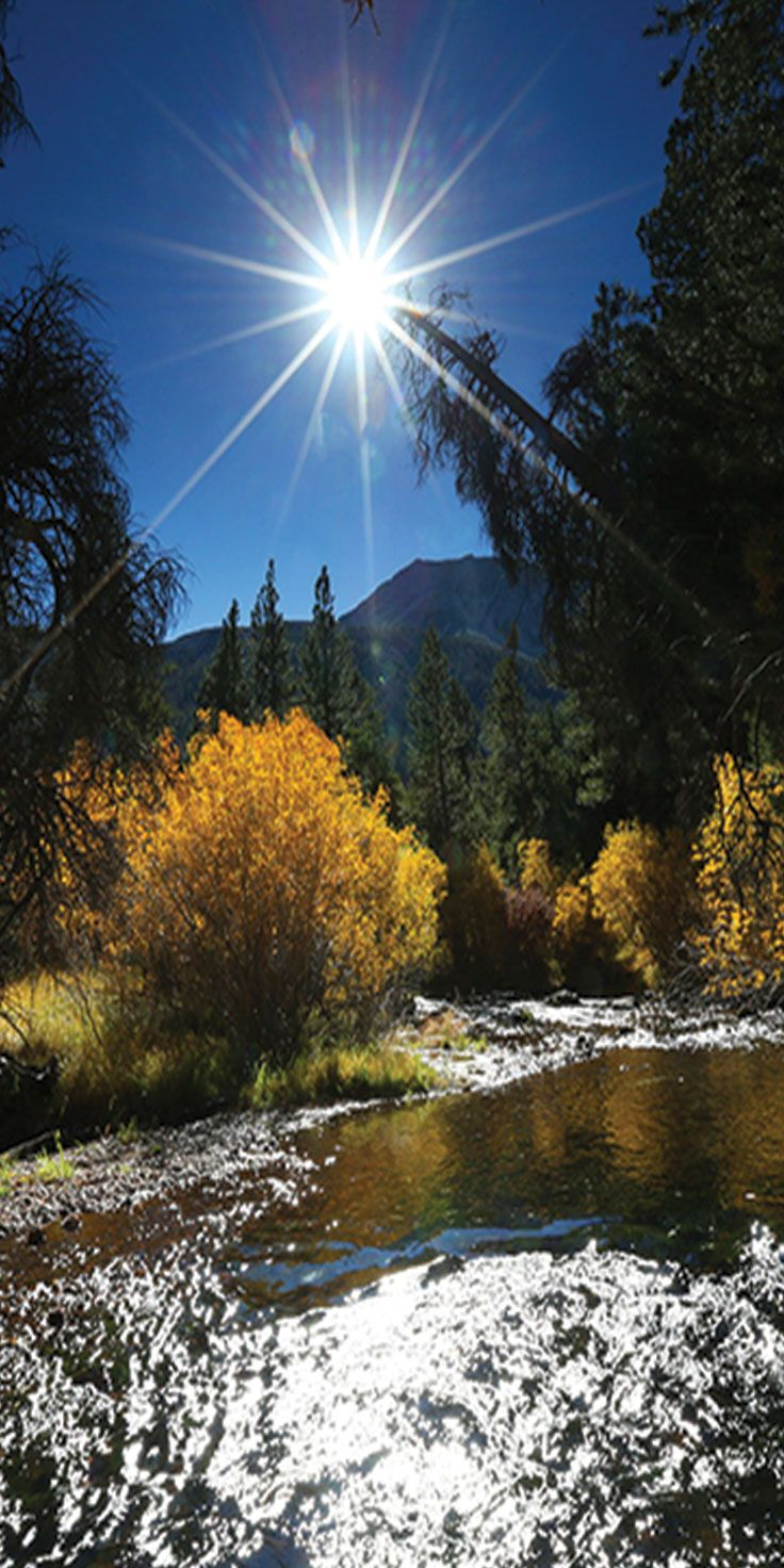 Beautiful Autumn days in Yosemite - by Sean Scott