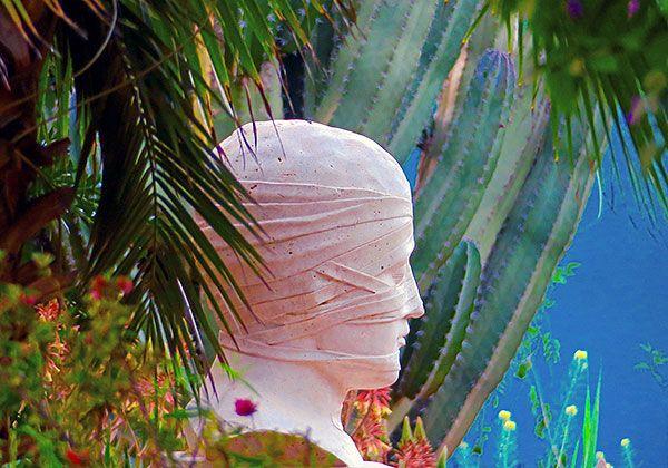 Experience Anima Le Retour Du Paradis Cree Par Andre Heller In 2020 Plant Leaves Cree Marrakech
