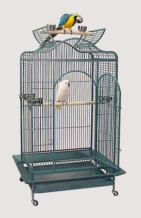 Article Cabanes Dans Les Arbres 61311822 as well Medium Bird Cages besides Kit 12oct additionally Cooltreehouseplans additionally Do It Yourself Gazebo Plans Pdf Plans Randkey. on large octagon treehouse plans