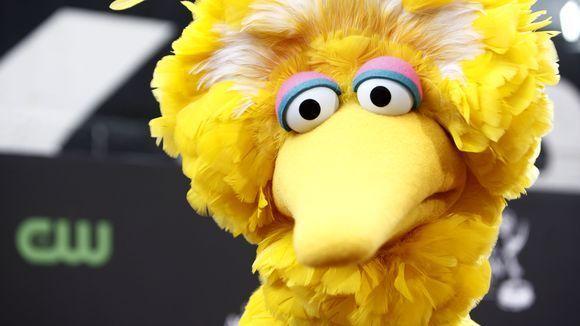 Big Bird, Beastie Boys Mashup Tells You How To Get To Sabotage Street