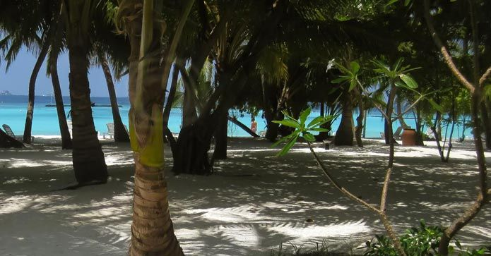 Ferie på Maldivene – er det noe for deg? https://www.travelmarket.no/blog/ferie-pa-maldivene?utm_source=rss&utm_medium=Sendible&utm_campaign=RSS