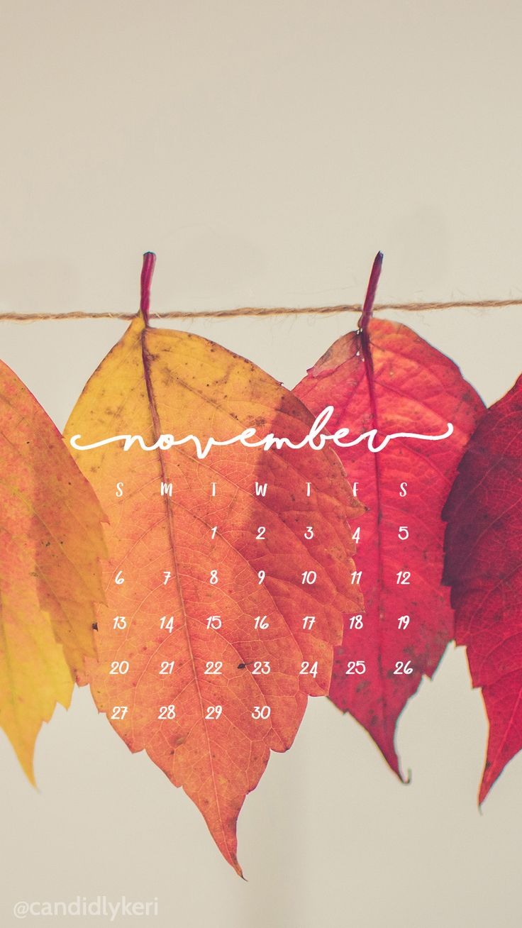 Pretty Leaf photography colorful leaves yellow orange red November calendar 2016 wallpaper you can download for free on the blog! For any device; mobile, desktop, iphone, android!