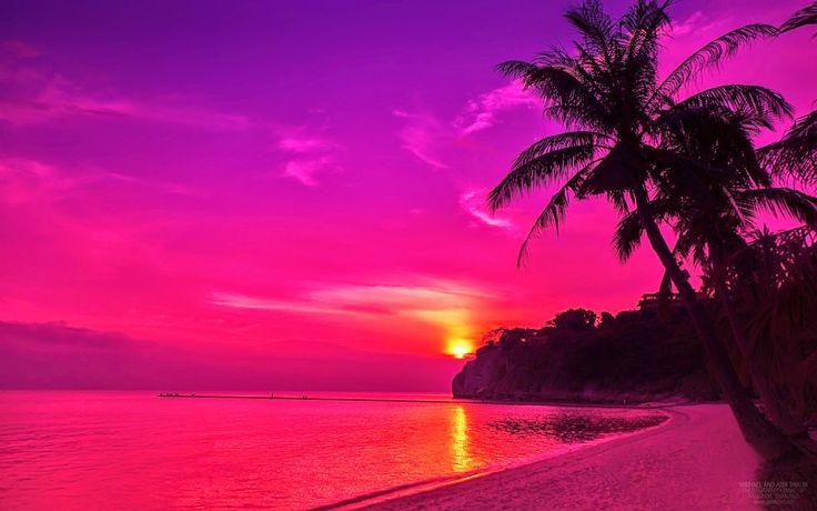 Pink Beach Sunset Wallpaper