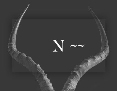 """Check out this @Behance project: """"Namibia Animal Park"""" https://www.behance.net/gallery/44004339/Namibia-Animal-Park"""