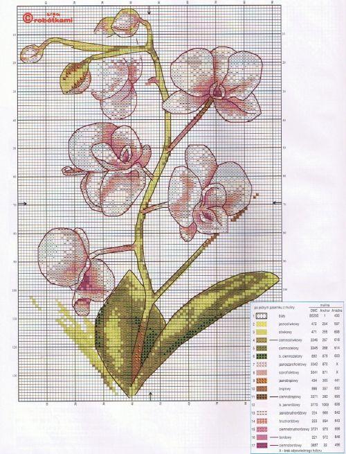 vrukodelii.com attachments 2013 06 orhideya-shema-500x655.jpg
