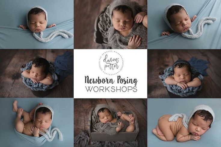 Newborn posing workshops 2018 newborn workshops group workshops newborn mentor