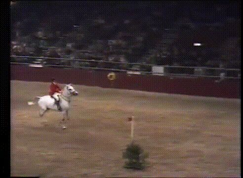 Nick Skelton and Lastic making a world record by jumping over 7 and a half feet