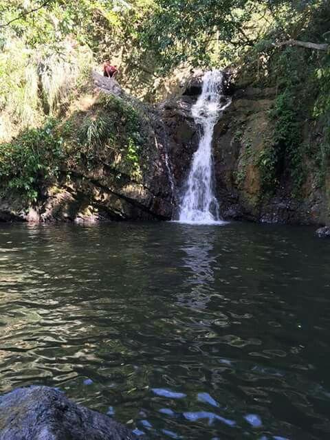 Rio Guadiana Naranjito PR  Puerto Rico  Puerto Rico