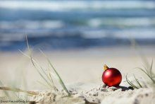 5 of the Best Reasons to Spend Christmas in Charleston This Year | Pam Harrington Exclusives | Johns Island, SC