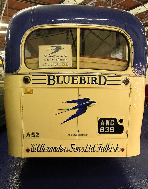 Back of an old Blue Bird school bus - probably 4Os