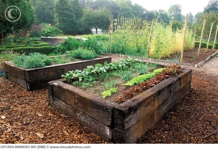Love raised beds -  especially with railway sleepers.