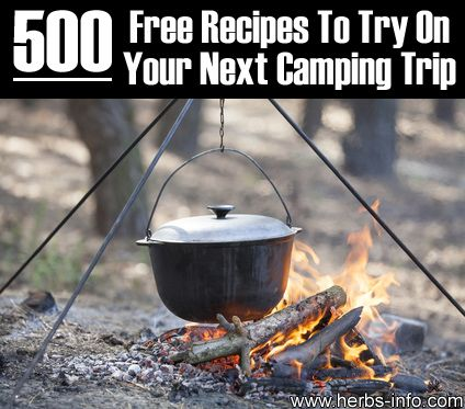 500 Free Recipes To Try On Your Next Camping Trip	►►	http://herbs-info.com/blog/500-free-recipes-to-try-on-your-next-camping-trip/?i=p