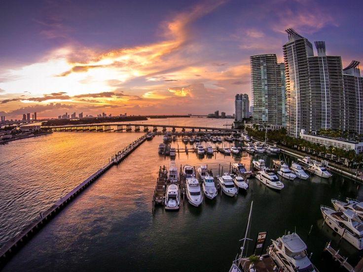 Miami Beach Marina by Damian Zamorano