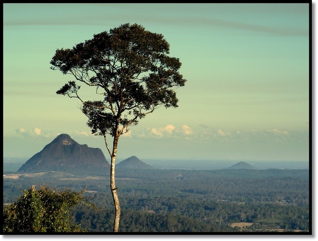 Beerwah, Australia (view glass house mountain landscape) - a photo by Evetta