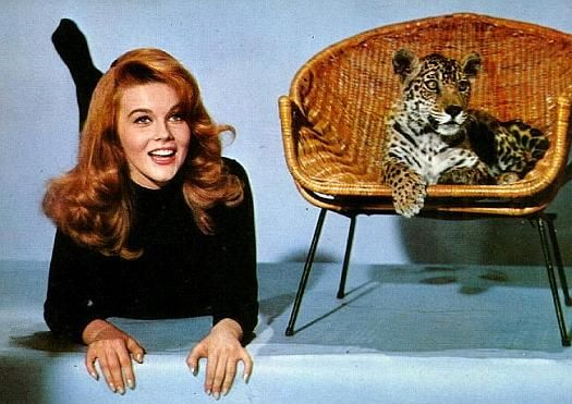 My Mom always tells me I look like Anne Margret from byebye birdie!