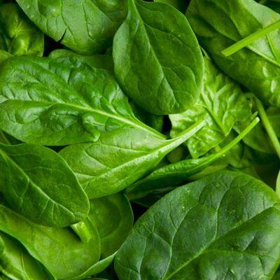 23-4-15: La calidad en las verduras de hoja verde se nota en la brillantez y uniformidad del color, así como en la integridad de sus hojas. http://consejonutricion.com
