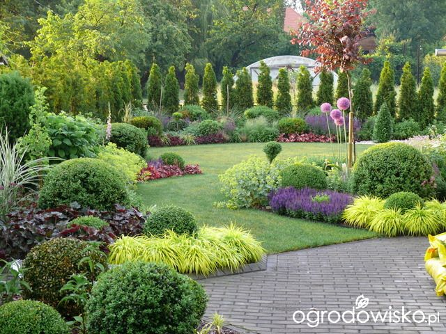 Ogród mały, ale pojemny;) - strona 78 - Forum ogrodnicze - Ogrodowisko