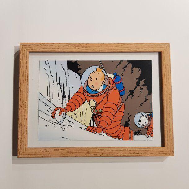 Tintin Og Terry I Rumdragt Billede I Ramme Billeder Thomsons I 2020 Tintin Billeder Billede