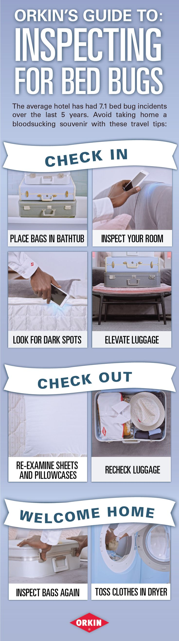 13 best bed bugs images on pinterest bed bugs diy pest control avoid picking up bed bugs during your travels with these helpful tips solutioingenieria Images