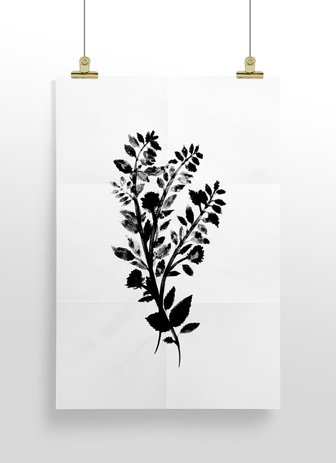 NEW PRINTS FOR YOU | GROW & BE BETTER – Cocorrina