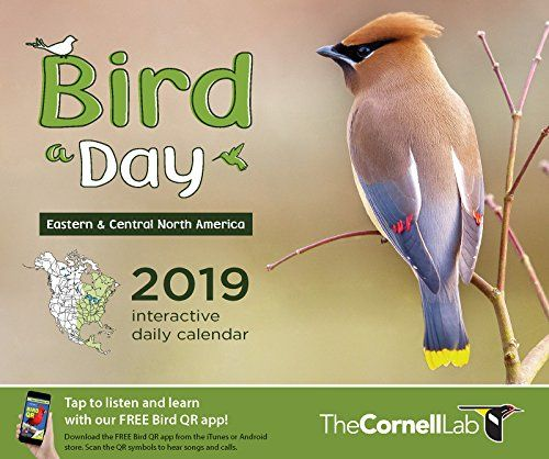 Bird-A-Day 2019 Daily Calendar: Eastern & Central North America - The Bird-A-Day 2018 interactive daily calendar, designed by the Cornell Lab especially for bird lovers, is unlike any other bird calendar. Bird-A-Day is the only page-a-day desk calendar series that showcases birds regionally, just like our field guides (one version for bird lovers in Eastern / C...