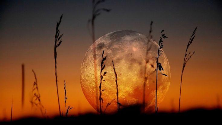 Krásna Full Moon HD Wallpaper