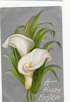 201 mejores imgenes de FLORES en Pinterest  Flores Pinceladas y