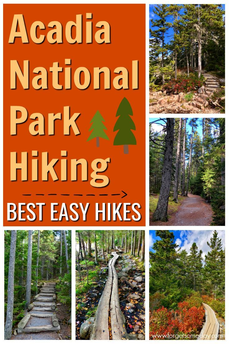 Best Easy Hikes in Acadia National Park
