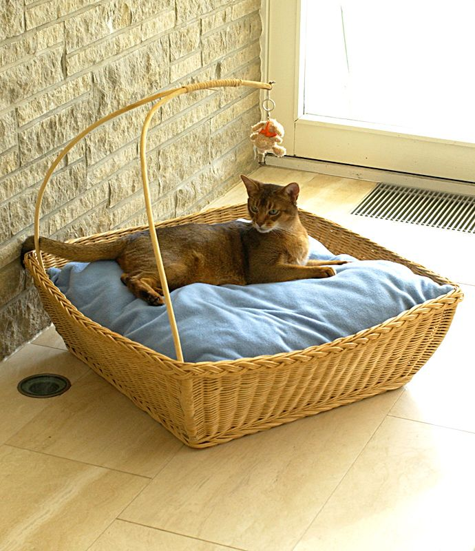 Magical Cat Bed - un cesto di gatto affascinante fatta di rattan.