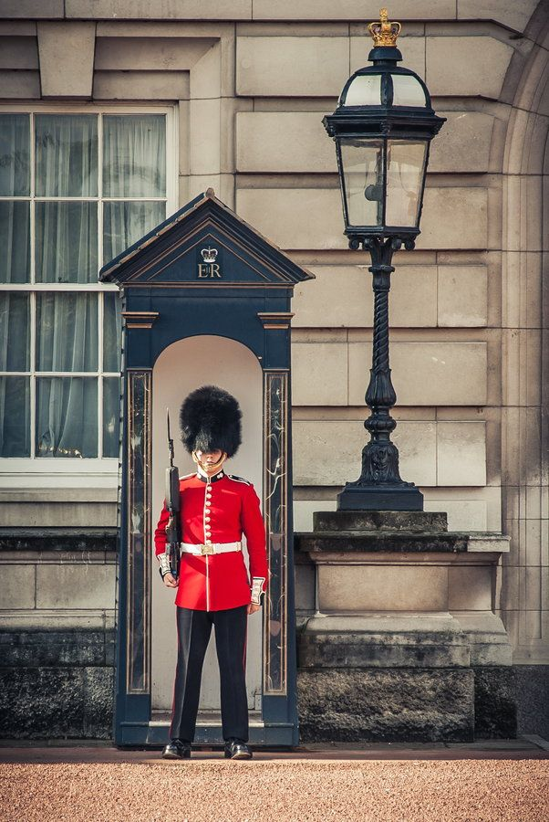 Campaign to stop black bears being killed for hats for ... |Buckingham Palace Guards Hats