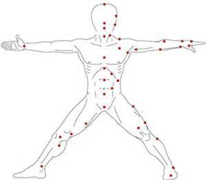 Puntos debiles del cuerpo humana para golpear yahoo dating