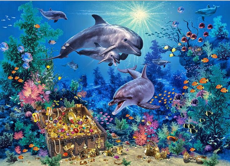 326 Best Dolphins Images On Pinterest Water Animals