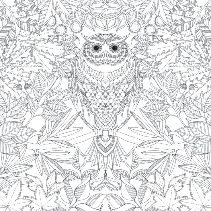 Zen Mandalas Coloring Book : 121 best coloring book images on pinterest