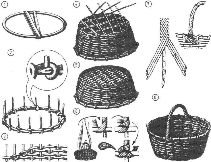 Виды плетение корзин из лозы и ивы. Как правильно заготавливать материал? |