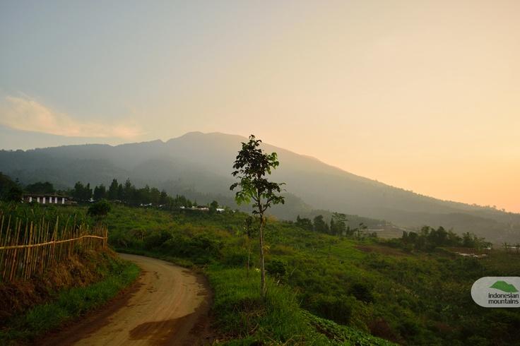 Road to Mount Salak