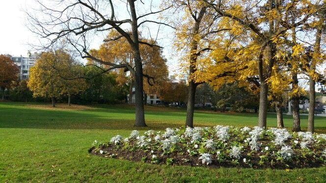 Parc Montsouris en automne