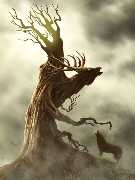 best 25 dessin arbre ideas on pinterest arbre illustration