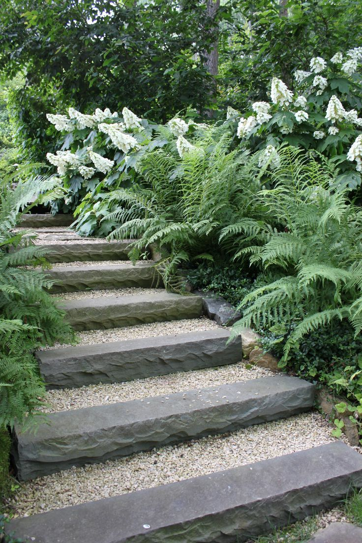 The natural stone steps of a stairway garden feature climb a small - We Created These Simple Steps Using Bluestone Risers The Oakleaf Hydrangea And Lady Fern Add Some Exuberance To The Scene Garden Step Design