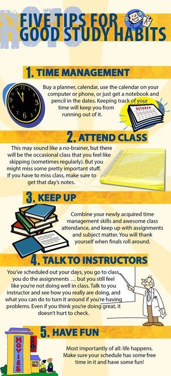 best good study habits ideas study habits  five tips for good study habits studying tips study tips