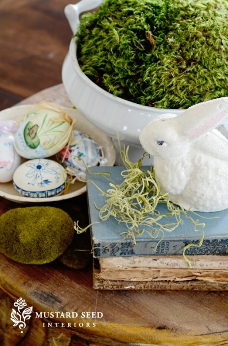 Moss. Books. White bowl.