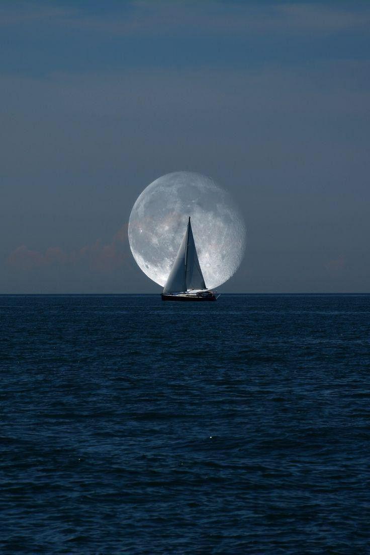 Парусник луна картинки