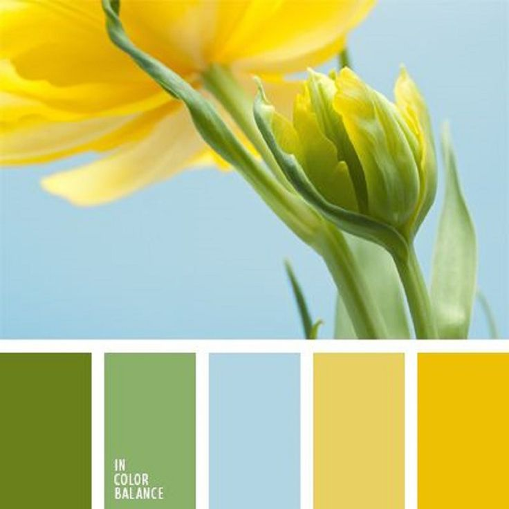 Сочетания цветов желтый зеленый синий