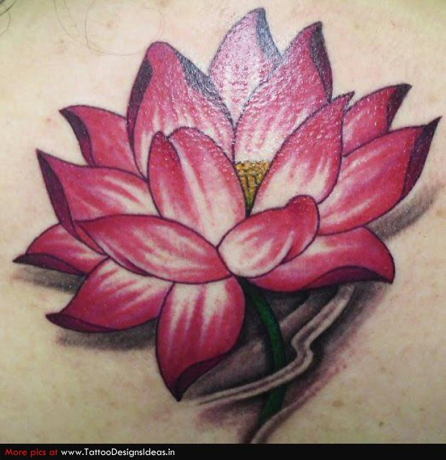 Hummingbirds n Lotus Tattoo Picture On Upper Arm - Tattoes Idea ...
