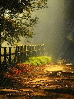 Chove Chuva…Chove sem Parar…                                                                                                                                                     Mais
